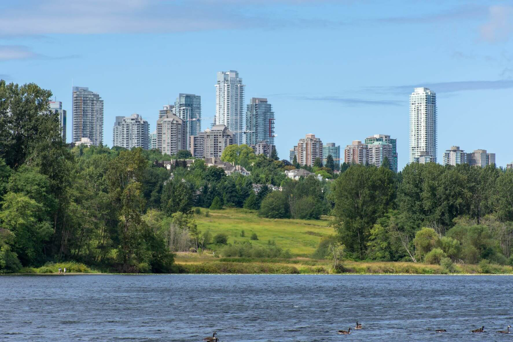 burnaby skyscrapers with green grass and lake in foreground